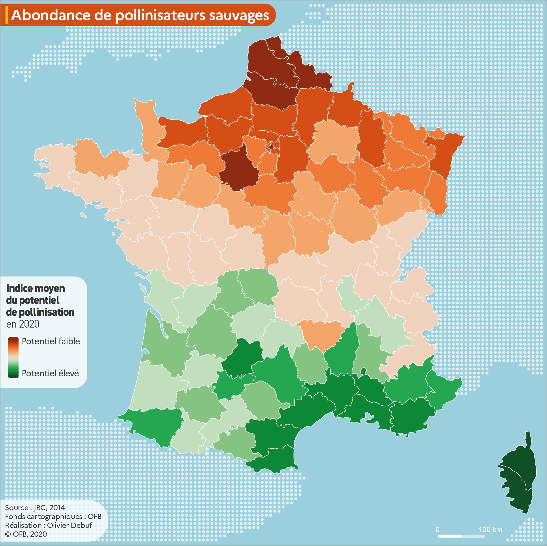 Abondance des pollinisateurs sauvages en France métropolitaine