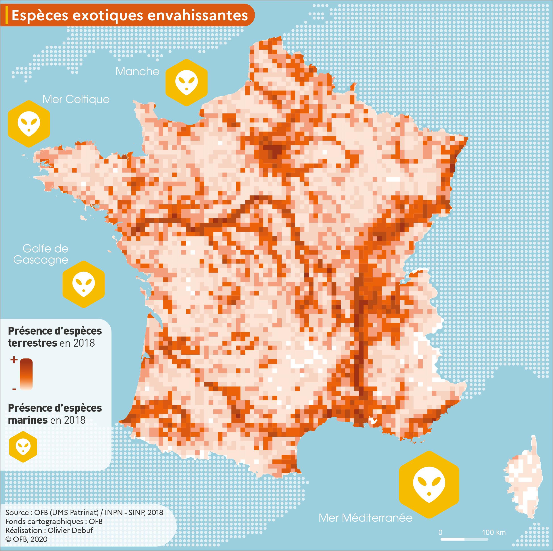 Carte de la présence des espèces exotiques envahissantes en métropole (2018)