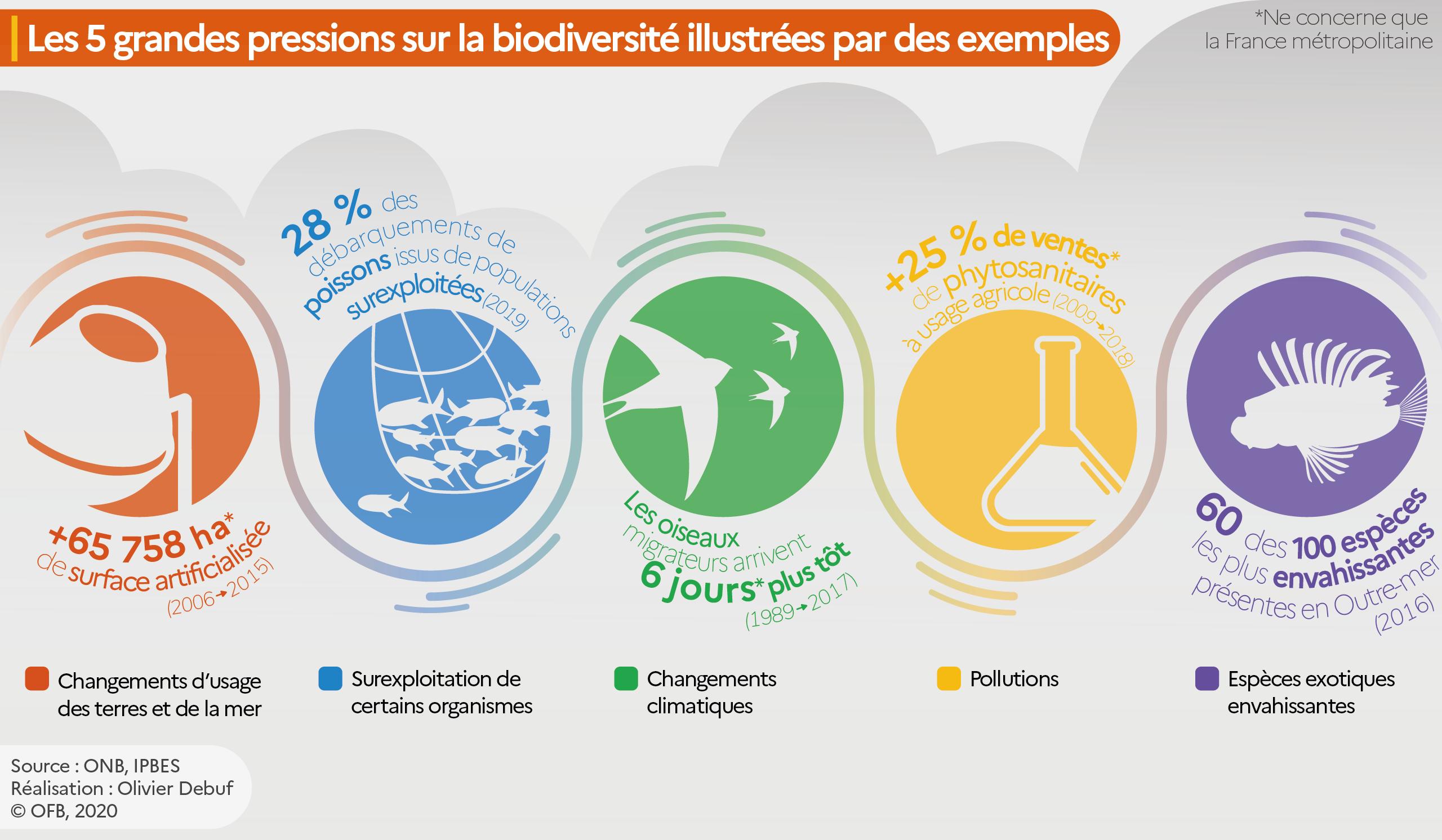 Infographie des 5 facteurs de pressions sur la biodiversité