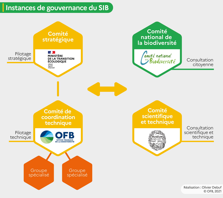 Gouvernance SIB