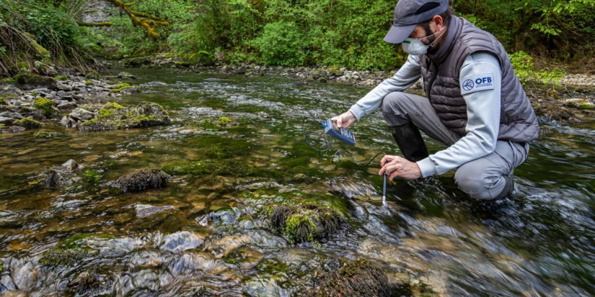 Mesure de la qualité physico-chimique des eaux de surface