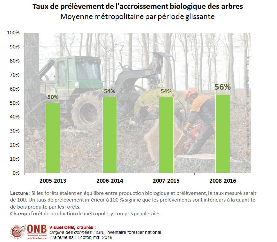 Bilan des flux de bois en forêt de production, par grande région écologique, pour la période 2007 à 2015