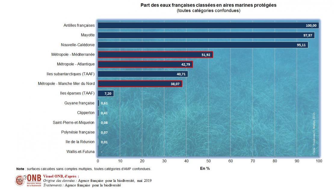 Nombre et superficies détaillées d'AMP par découpages géographiques (sans comptes multipes)