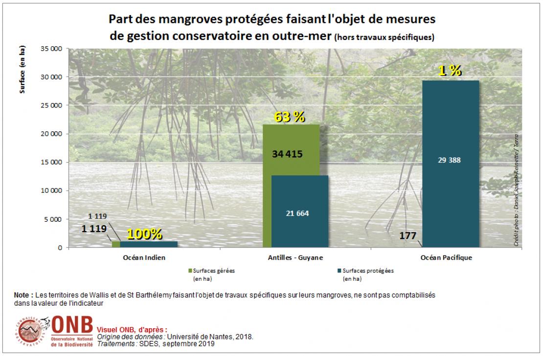 Part des mangroves protégées faisant l'objet de mesures de gestion conservatoire