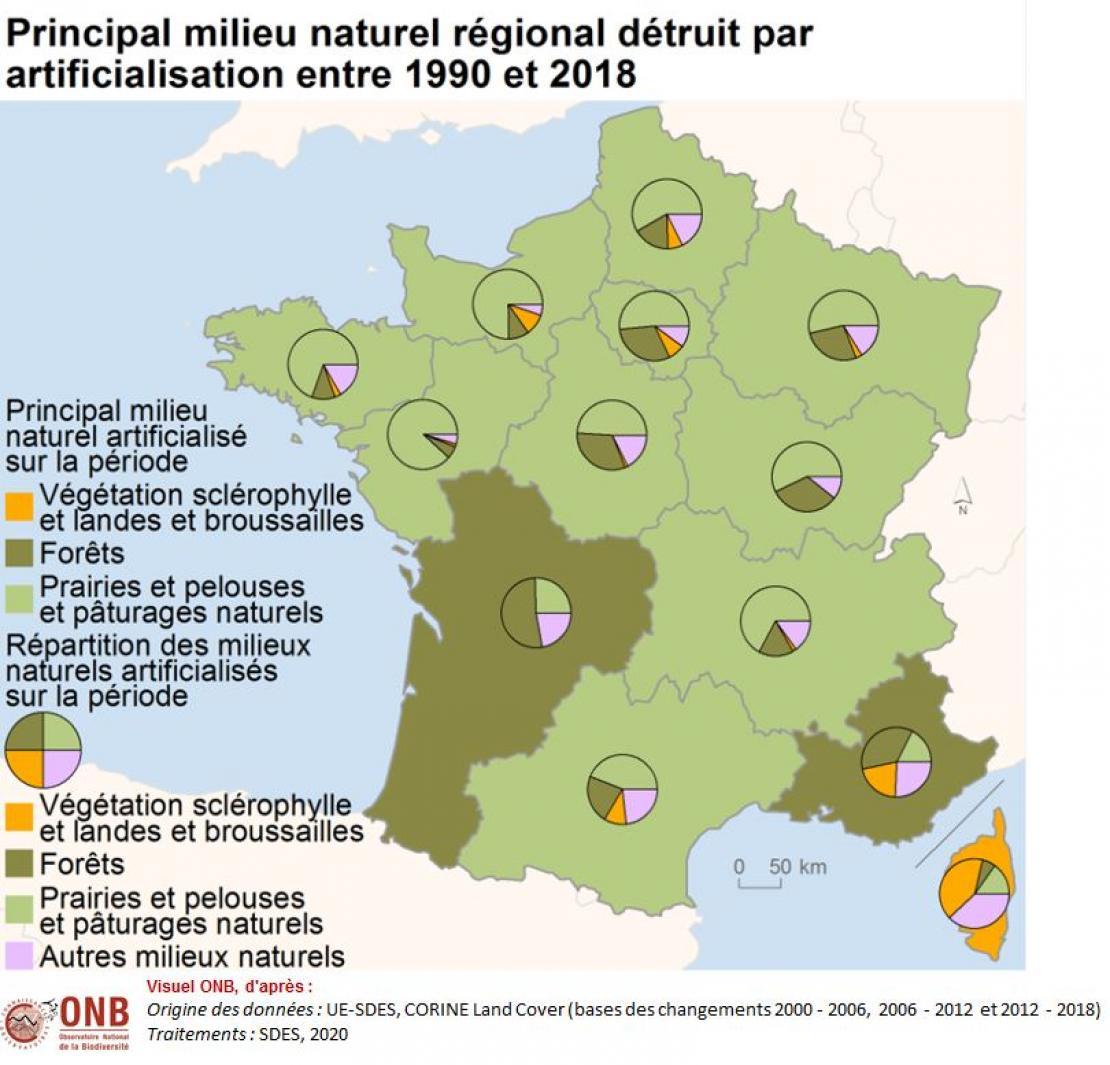 Répartition des milieux naturels détruits par artificialisation, mise en culture ou création de plans d'eau entre 1990 et 2018 par région