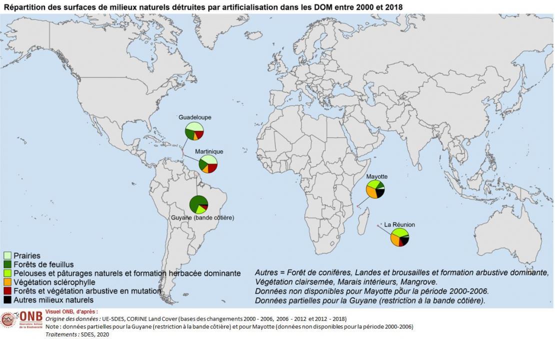 Répartition des milieux naturels détruits par artificialisation, mise en culture ou mise en prairie entre 2000 et 2018 dans les DOM