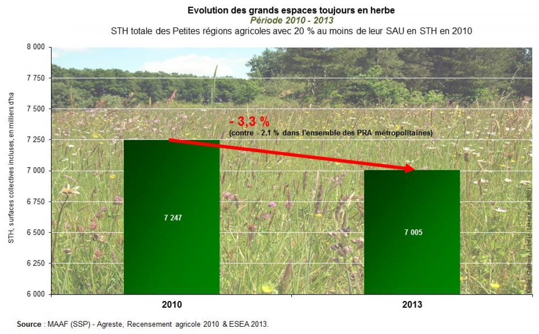 STH, surfaces collectives incluses, des petites régions agricoles (PRA) où ces surfaces représentent au moins 20% de la SAU en 2010