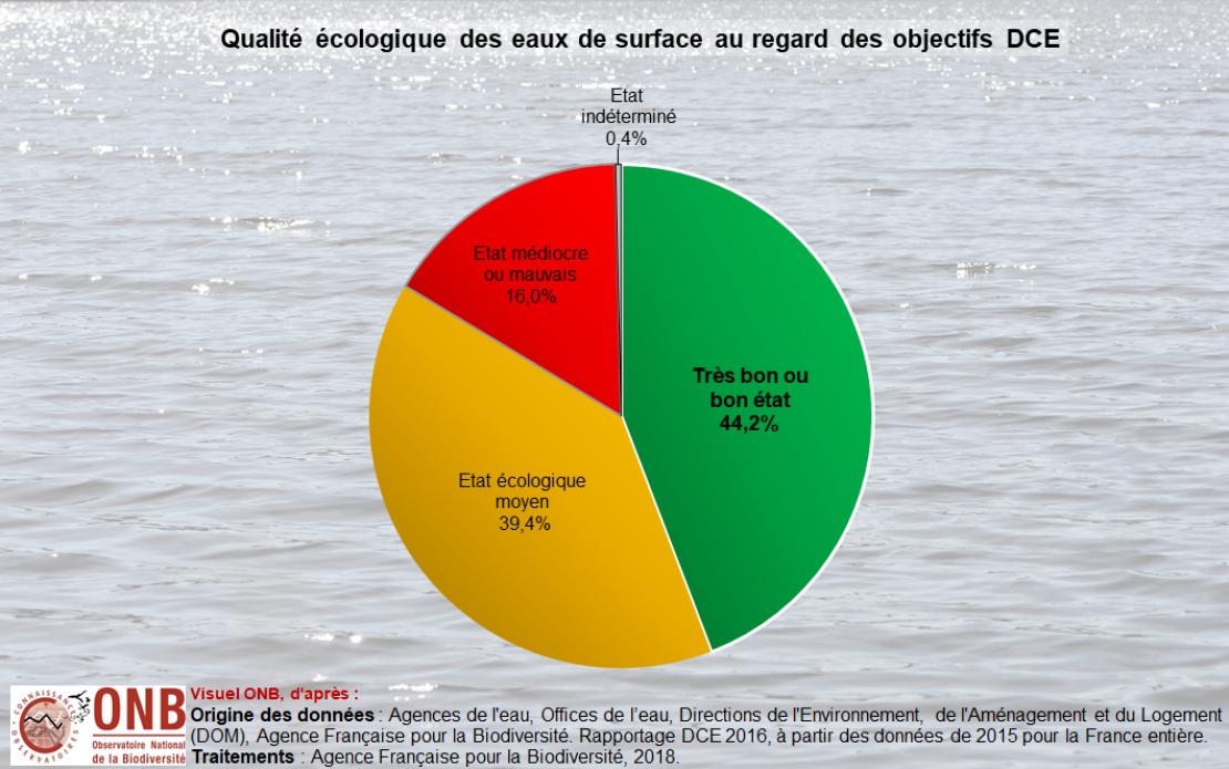 État écologique des masses d'eau de surface en France métropolitaine et dans les DOM