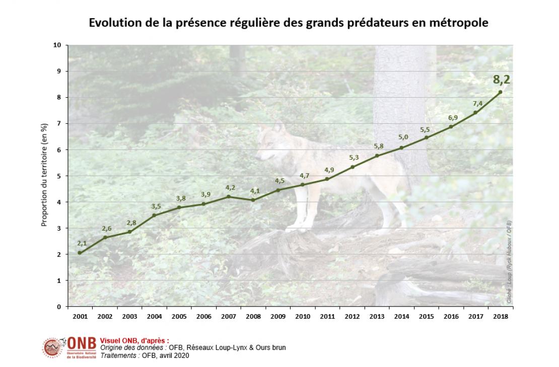 Évolution de la présence régulière des grands prédateurs en métropole