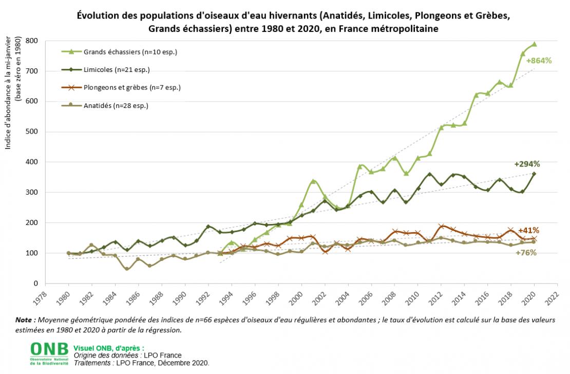 Évolution des populations d'oiseaux d'eau hivernants (Anatidés, Limicoles, Plongeons et Grèbes, Grands échassiers) entre 1980 et 2020, en France métropolitaine