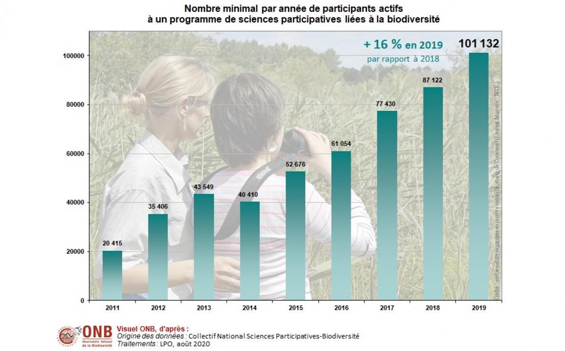 Évolution du nombre minimal de participants actifs à un programme de sciences participatives liées à la biodiversité