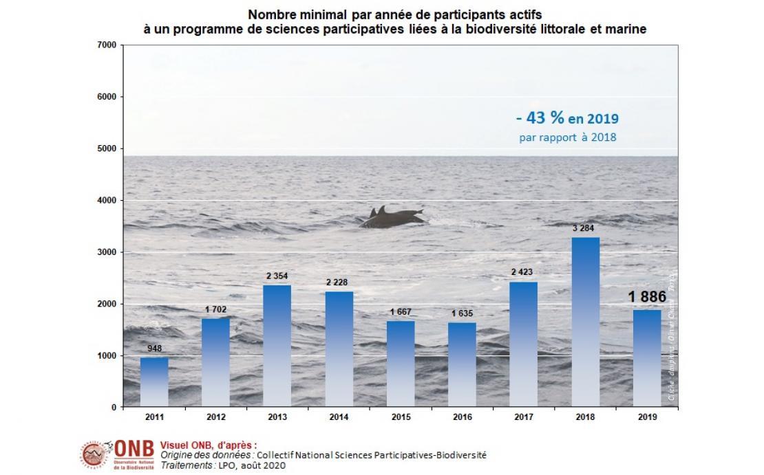 Évolution du nombre minimal de participants actifs à un programme de sciences participatives liées à la biodiversité littorale et marine