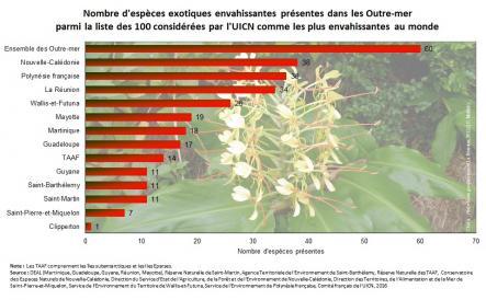Nombre d'espèces parmi les 100 les plus envahissantes au monde par DOM/COM