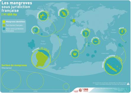 Part des mangroves faisant l'objet de mesures de conservation sur le territoire